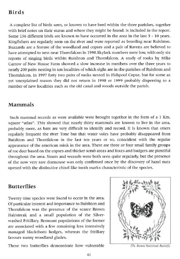 Page_41